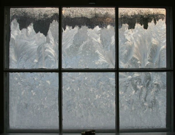 Details You Need to Know from Your Window Company
